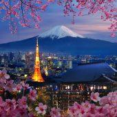 中國繼續保持日本最大出口市場地位